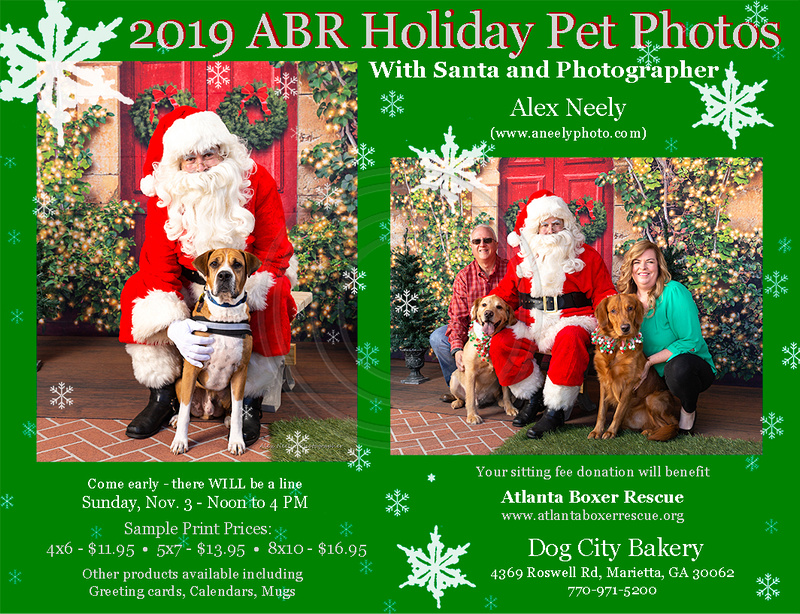 ABR - Dog City Bakery 2019 - low res